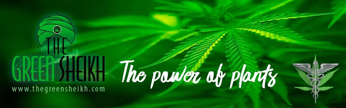The Green Sheikh Banner